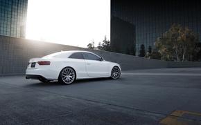 Wallpaper auto, Audi