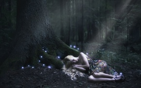 Picture forest, girl, night