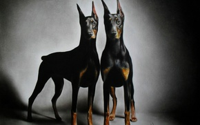 Picture graphics, painting, brothers, Alex, Dobermans