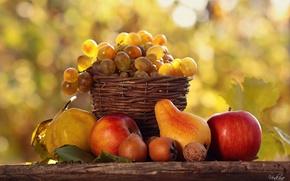 Wallpaper table, light, nature, bokeh, fruit, food, gifts, basket, autumn