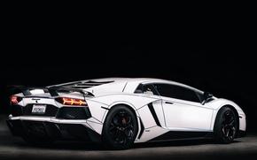 Picture Lamborghini, Car, LP700-4, Aventador, 2014, Rear, Tron Tuning