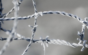 Picture wire, frost, barbed, area(