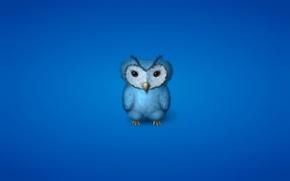 Wallpaper minimalism, blue, bluish background, owl, owl, bird