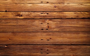 Picture wall, wood, tables, natural