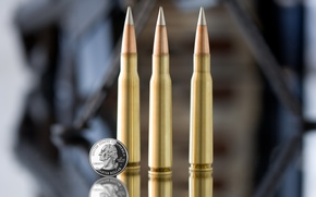 Picture macro, bullet, coin