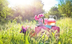 Picture summer, grass, flowers, nature, glass, vase, pitcher, Ottoman, compote