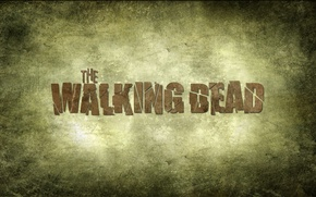 Picture the series, the walking dead, the walking dead