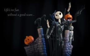Picture night, holiday, the film, cartoon, pumpkin, Halloween, halloween, night, the bare bones, movie, holiday, film, …