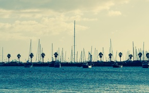 Picture Marina, yachts, morning, California, San Diego, sunrise, mast, sail boats
