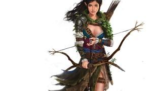 Picture look, bow, Archer, art, elf, arrows