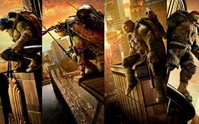 Wallpaper poster, friends, Teenage mutant ninja turtles 2, Leonardo, Donatello, Raphael, fantasy, Michelangelo, Teenage Mutant Ninja ...
