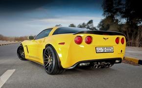 Picture road, yellow, markup, corvette, Chevrolet, chevrolet, yellow, back, grand sport, Corvette, Grand sport