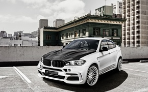 Picture F16, Hamann, X6M, white, crossover, BMW, BMW