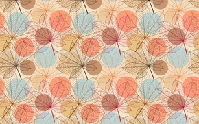 Picture leaves, pattern, veins, chestnut