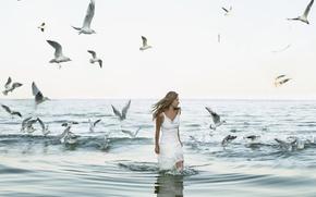 Picture sea, girl, birds, seagulls, blonde