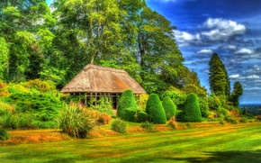 Wallpaper design, Chirk Castle Gardens, grass, HDR, canopy, benches, greens, UK, the bushes, trees, field