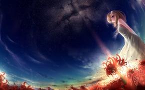 Picture field, girl, stars, sunset, flowers, art, red, munashichi, radiata, Lycoris