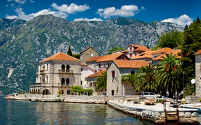 Picture mountains, palm trees, Montenegro, Perast