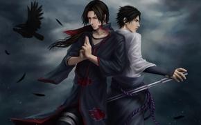 Wallpaper clouds, katana, feathers, naruto, ninja, Raven, Sasuke, Naruto, art, Sasuke, Itachi, Uchiha, Itachi, Uchiha, zetsuai89