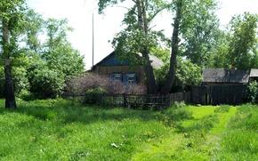 Picture summer, nature, Village, Mizonovo