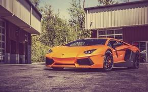 Picture Lamborghini, Lamborghini, Orange, LP700-4, Aventador, Aventador, Asphalt