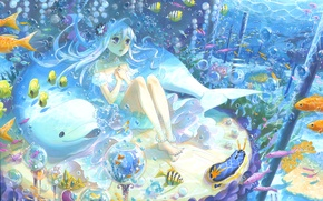 Wallpaper fish, Dolphin, bubbles, art, girl, under water, kyouya kakehiki