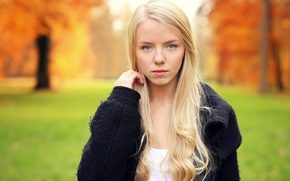 Picture autumn, look, girl, hair, blonde