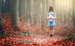 Picture autumn, forest, toy, girl