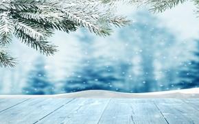 Picture winter, snow, snowflakes, tree, nature, winter, snow
