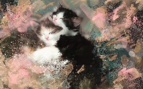 Picture picture, watercolor, kittens, fluffy, strokes, sleep, black and white, Wallpaper from lolita777
