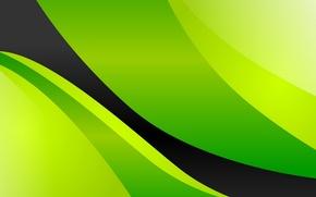 Wallpaper green, background, black