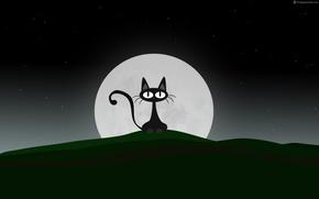 Picture cat, night, the moon, vector, black, vector, moon, black, night, cat