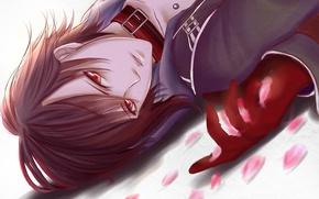 Picture petals, guy, lying, amnesia, shin