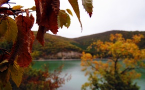 Picture autumn, the sky, leaves, macro, mountains, lake, village, October, autumn, October, Abrau, Yuri, Abrau-Dyurso