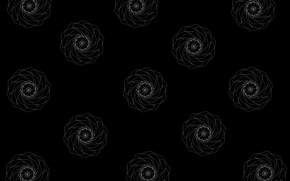 Picture line, graphics, texture, black background, white roses