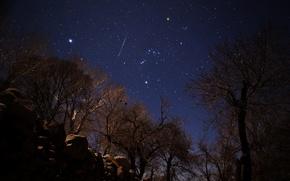 Wallpaper stars, meteor, Geminids, Iran