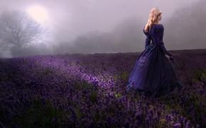 Picture field, girl, lavender