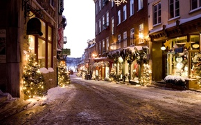Picture winter, road, street, tree, new year, home, Christmas, lane