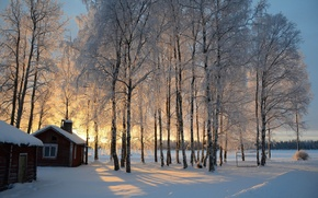 Wallpaper sunrise, snow, winter, hut, trees, Finland, Finland, birch