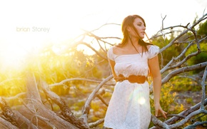 Picture girl, the sun, branches, photographer, girl, Taylor, photography, photographer, Brian Storey