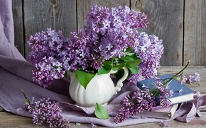 Picture branches, books, bouquet, still life, lilac