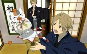 Picture cat, room, glasses, pot, kimono, art, stand, tangerines, Natsume Yuujinchou, The Natsume book of friendship, ...
