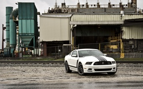 Picture white, plant, mustang, the fence, white, ford, Ford Mustang, boss 302, boss 302