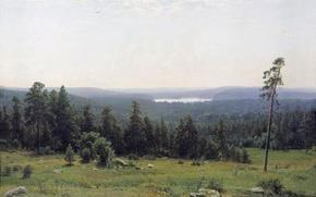 Picture picture, Shishkin, Lesnaya dal