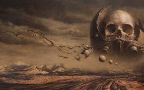 Picture death, desert, skull, sake, Nick Keller