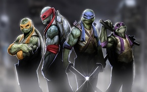 Wallpaper leonardo, turtles, raphael, teenage mutant ninja turtles, tmnt, michelangelo, ninja, donatello