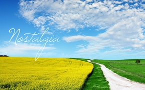 Wallpaper road, greens, field, the sky, yellow