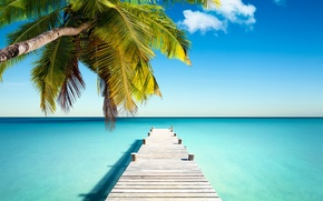 Wallpaper sand, sea, beach, the sun, tropics, the ocean, shore, island, summer, sea, ocean, coast, blue, ...
