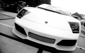 Picture auto, black and white photo, Lamborghini murcielago