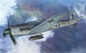 Picture war, ww2, Fw190D